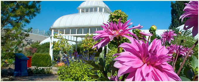 Spring Flower Show At Phipps Conservatory And Botanical Gardensanne